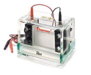 Owl Dual-Gel Vertical Electrophoresis Systems from Thermo Scientific