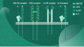 Colony stimulating factor family ligands and receptors for research