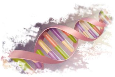 image.axd?picture=2009%2F12%2FDNA-1.jpg