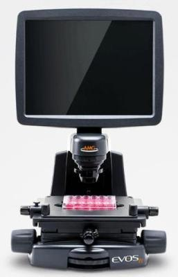 EVOS fl Fluorescence Microscope from AMG