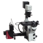 Confocal Microscope from Thorlabs