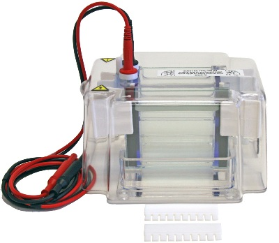 MGV-402 Dual Vertical Mini-Gel Electrophoresis System from CBS scientific