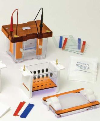 Clarit-E Vertical Electrophoresis System from Alphalabs
