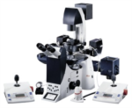 AM6000 Inverted Microscope from Leica