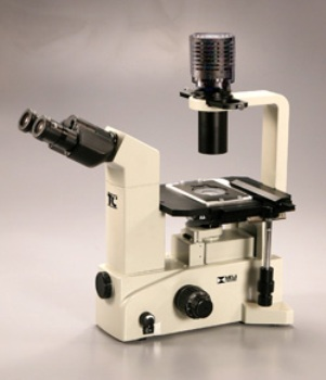 TC-5100 Brightfield Binocular Inverted Microscope from Meiji