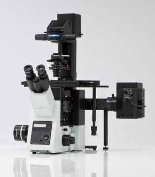 IX73 Inverted Motorized Microscope from Olympus