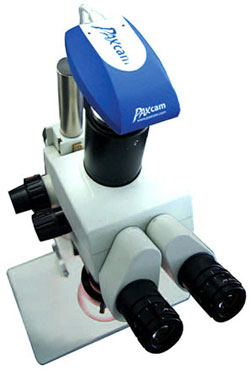 USB 2.0 Digital Microscope Camera from Paxcam