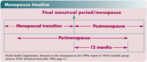 Balancing Progesterone and Estrogen during Menopause