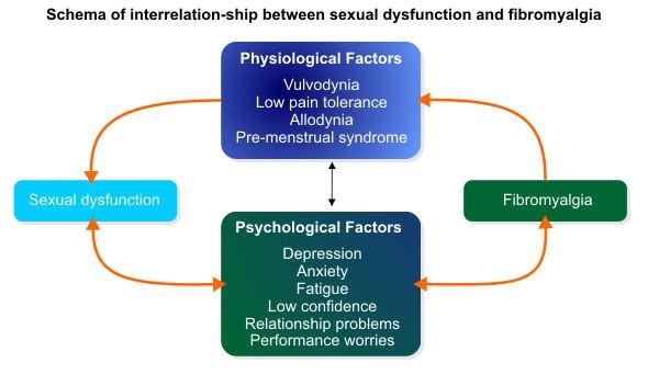 fibromyalgia and sexual drive Almon lefthand