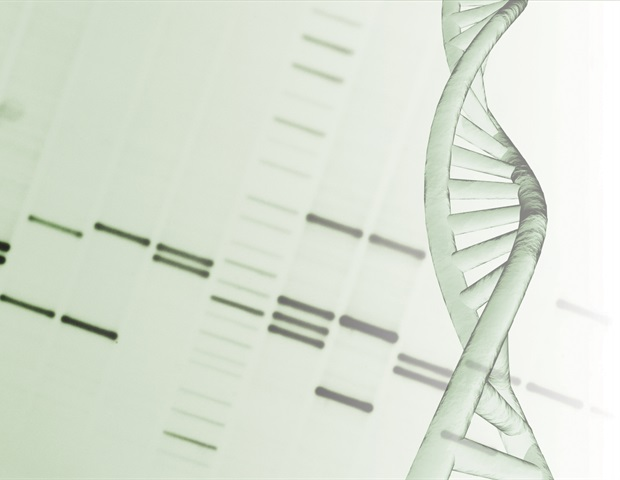 Image result for New DNA methylation GrimAge tool allows you to predict lifespan and healthspan
