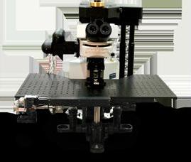 Ultima Multiphoton Microscope from Bruker Nano Surfaces