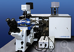 Optical Imaging using AFM and Raman Spectroscopy