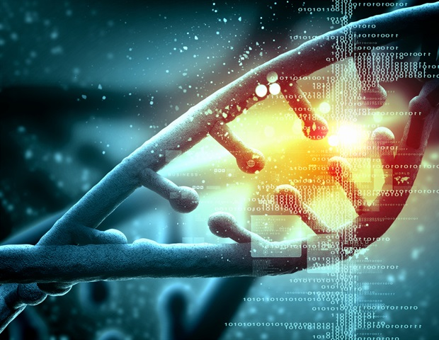Research provides new insights into tumorigenesis of meningioma