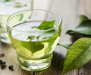 Study: Matcha green tea kills breast cancer stem cells