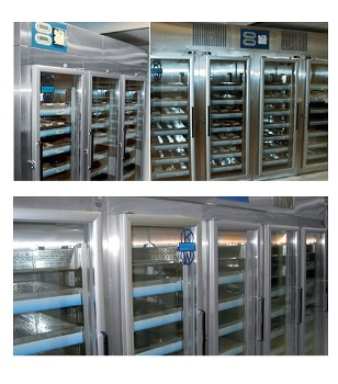 BlueLine K-LAB Premanufactured Vertical Refrigerators and Freezers from KW Apparecchi Scientifici