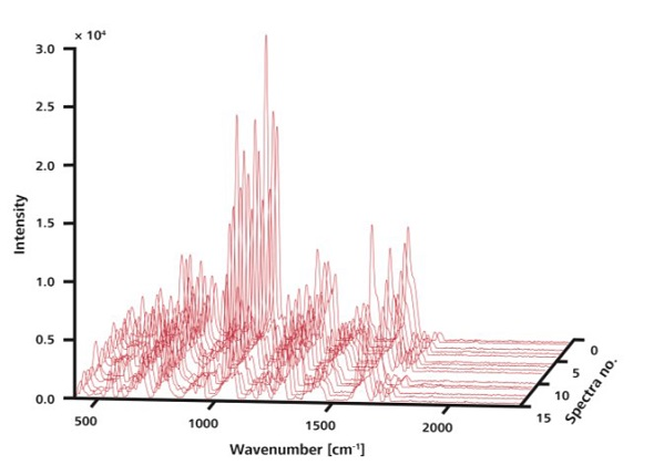 The 15 Raman spectra shown here were recorded at random locations on a single sample without ORS. Although peaks are observed at the same positions, intensities vary.