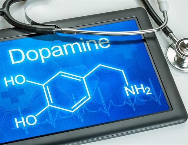Dopamine D2 receptor modulates Wnt expression, controls cell proliferation