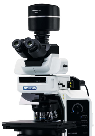 BX63 Automated Fluorescence Microscope from Olympus