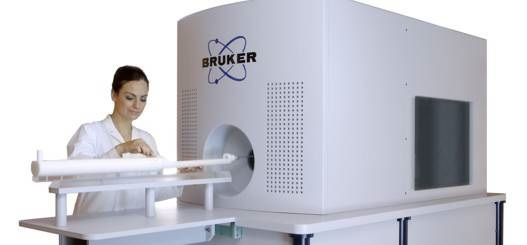 Bruker's MPI Provides Potential for Real-Time 3D Imaging In Vivo