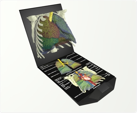 Holoxica develops world\'s first ever holographic 3D Anatomy Atlas ...