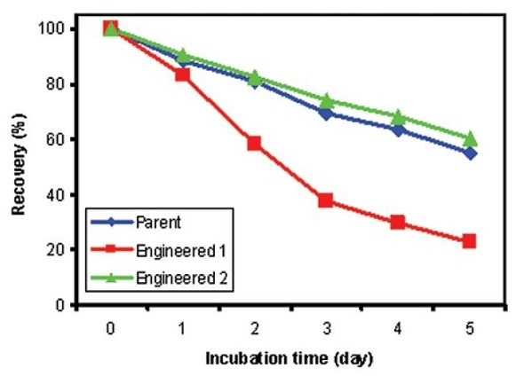 Percent soluble protein after accelerated stability studies for 0, 1, 2, 3, 4, and 5 days at 60°C. Blue: Parent Antibody; Red: Engineered Antibody 1; Green: Engineered Antibody 2.