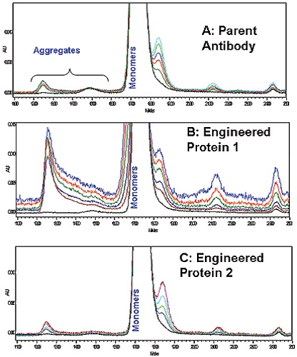 Overlaid SEC-HPLC chromatograms A: Parent Antibody, B; Engineered Antibody 1; C: Engineered Antibody 2.
