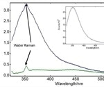 Using Fluorescence Spectroscopy for Quantitative Analysis