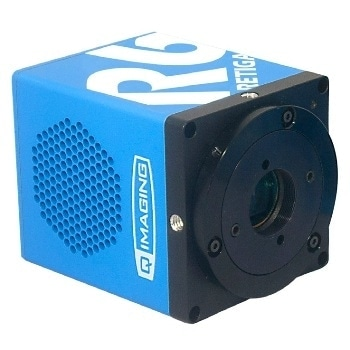 Retiga R6™ CCD Camera from QImaging