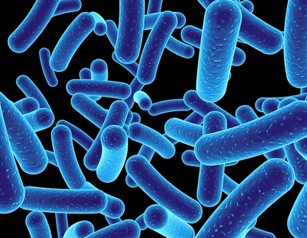 SMART researchers discover new way to reverse antibiotic resistance in some bacteria - News-Medical.net
