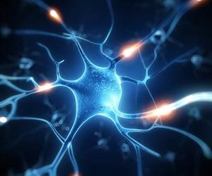 Human-oriented perspective needed to better understand Parkinson's disease