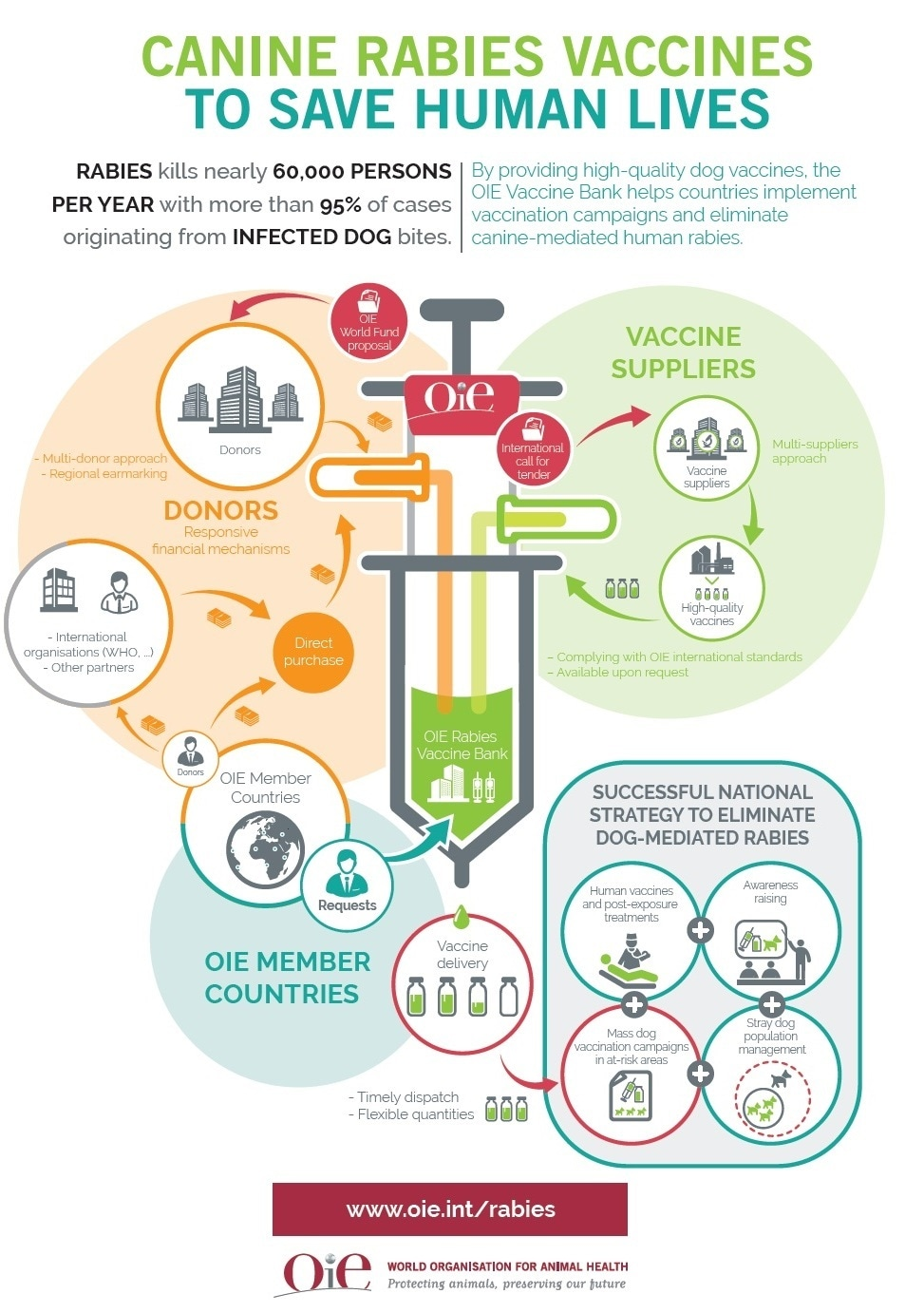 world rabies day 2016  oie releases video  infographic to explain operation of rabies vaccine bank