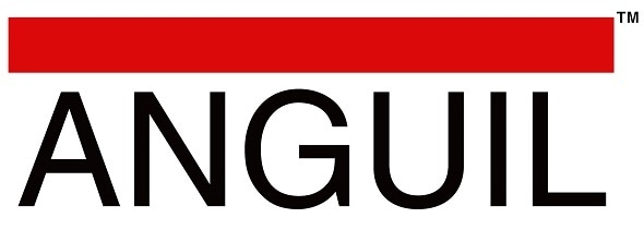 Anguil Environmental Systems