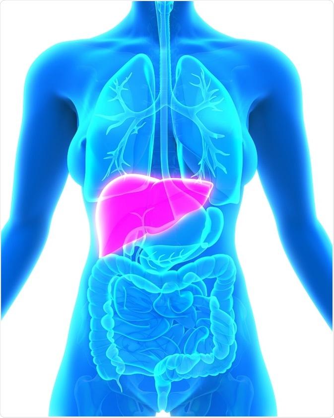 Cancer hepatico biliar - parohiamogosani.ro