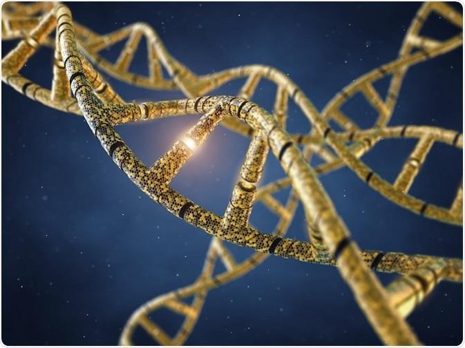 Bionanotechnology Applications