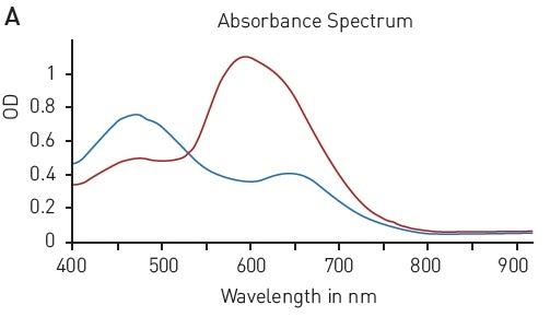 Detection Of Standard Absorbance-Based Protein Quantification