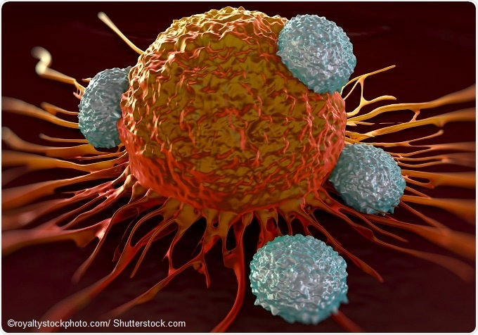 New immunotherapy sends multiple myeloma into remission