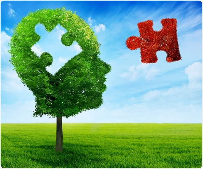 Adhd Real Brain Disorder Or Further >> How Does Adhd Affect The Brain