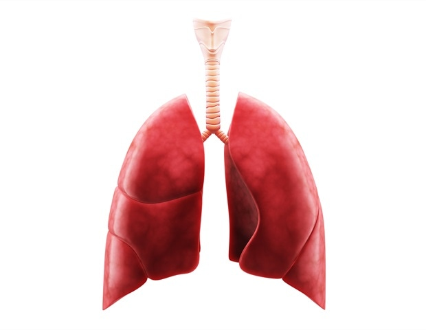 Yale-led study provides roadmap to discover new treatment for idiopathic pulmonary fibrosis
