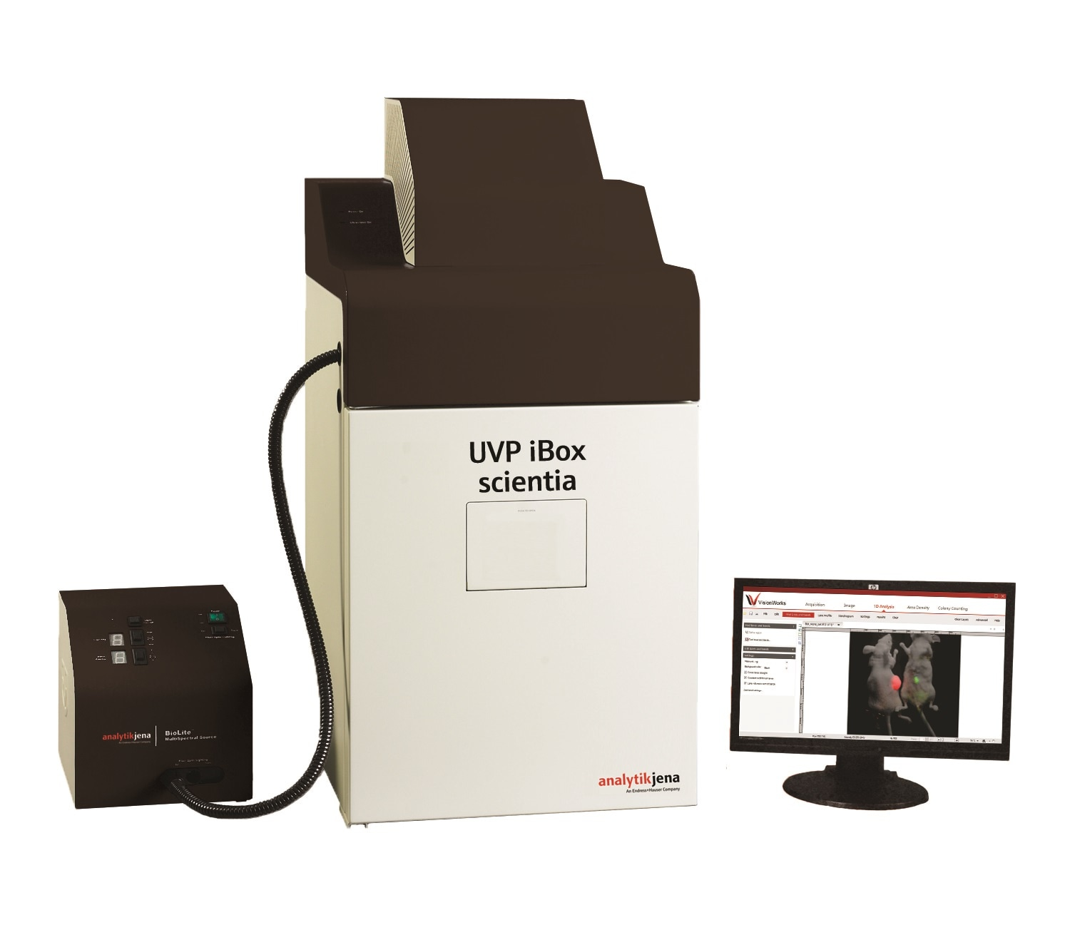 iBox® Scientia™ Small Animal Imaging System from Analytik-Jena