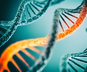 Researchers identify genes responsible for sun sensitivity and skin cancer vulnerability