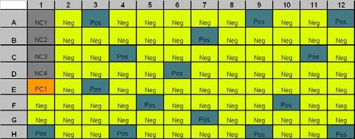 Plate layout. NC1-4 = negative control; PC1 = positive control; Pos = positive patient samples; Neg = negative patient samples.