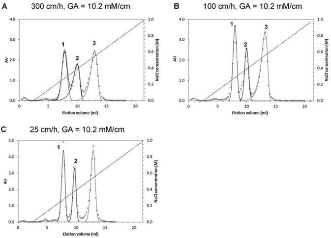 Automated Parallel Chromatography Optimizes Peak