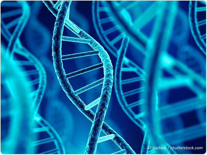an analysis of the dna molecules and the possibility to make clones Gridded array of recombinant clones to which dna probes have been  molecular analysis of individual genes  restriction enzymes make it possible.