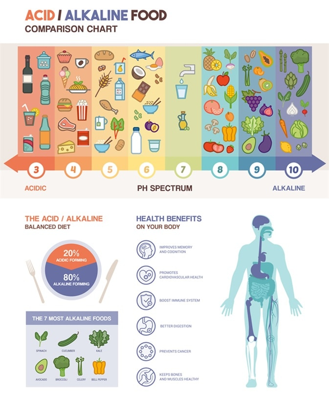 The acidic alkaline diet food chart infographics with food icons on a ph scale and body with health benefits icons. Image Credit: elenabsl / Shutterstock