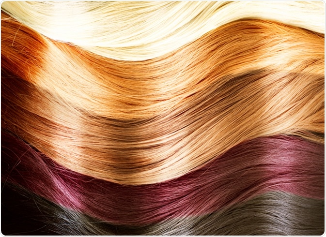 Hair Colors Palette. Hair Texture. Image Credit: Subbotina Anna / Shutterstock