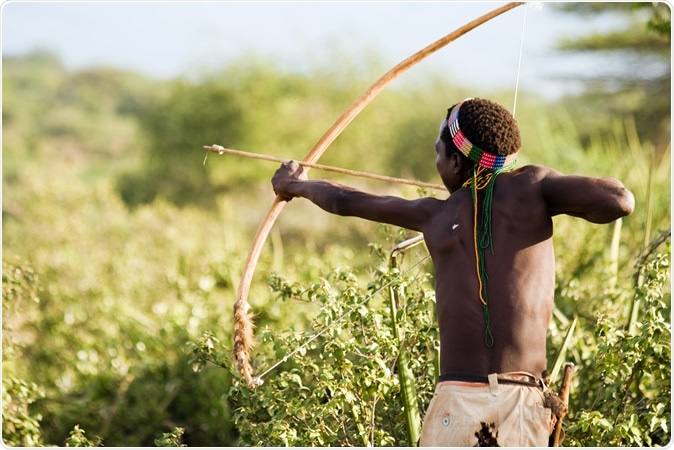 An unidentified Hadza bushman with bow and arrow during hunting on February 18, 2013 in Tanzania. Image Credit: erichon / Shutterstock