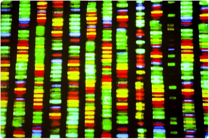 DNA-Sequenz. Bild Kredit: Gio.tto/Shutterstock