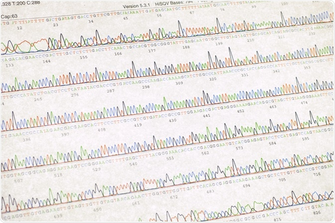 DNA sequencing result sheet. Image Credit: SINITAR / Shutterstock