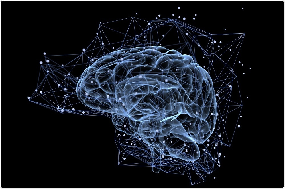 new study sheds light on memory formation