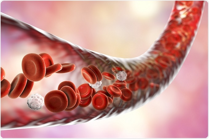 Live Cell Imaging Reveals Brain Blood Vessel Injury Response